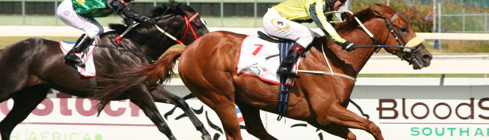 Noordhoek Flyer wins the Cape Guineas for Khaya Stables