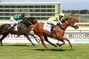 Noordhoek Flyer wins Cape Guineas for Khaya Stables and Dean Kannemeyer