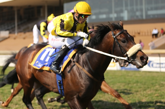 Great debut under Anthony Delpech
