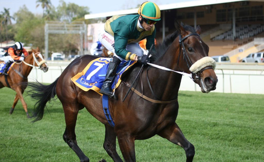 Hashtagyolo wins well under Anthony Delpech (Pic - Gold Circle)